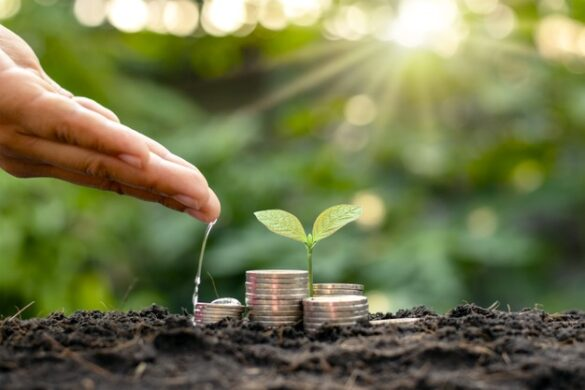 Steps for Efficient Business Financial Spring Cleaning