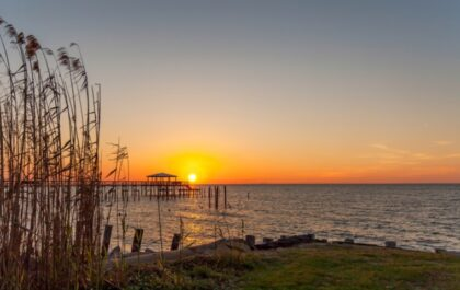 Moving to Foley, AL – a guide