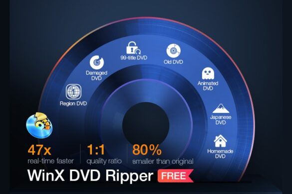 Why WinX DVD Ripper Recommended for Playing DVD Movie on Windows 11/10